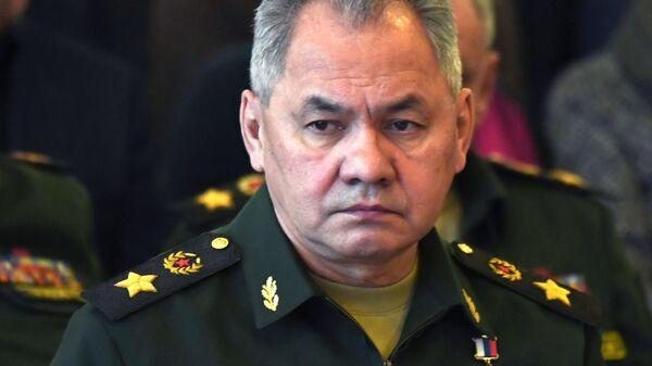 Minister Obrony Federacji Rosyjskiej, generał armii Siergiej Szojgu - Sputnik Polska