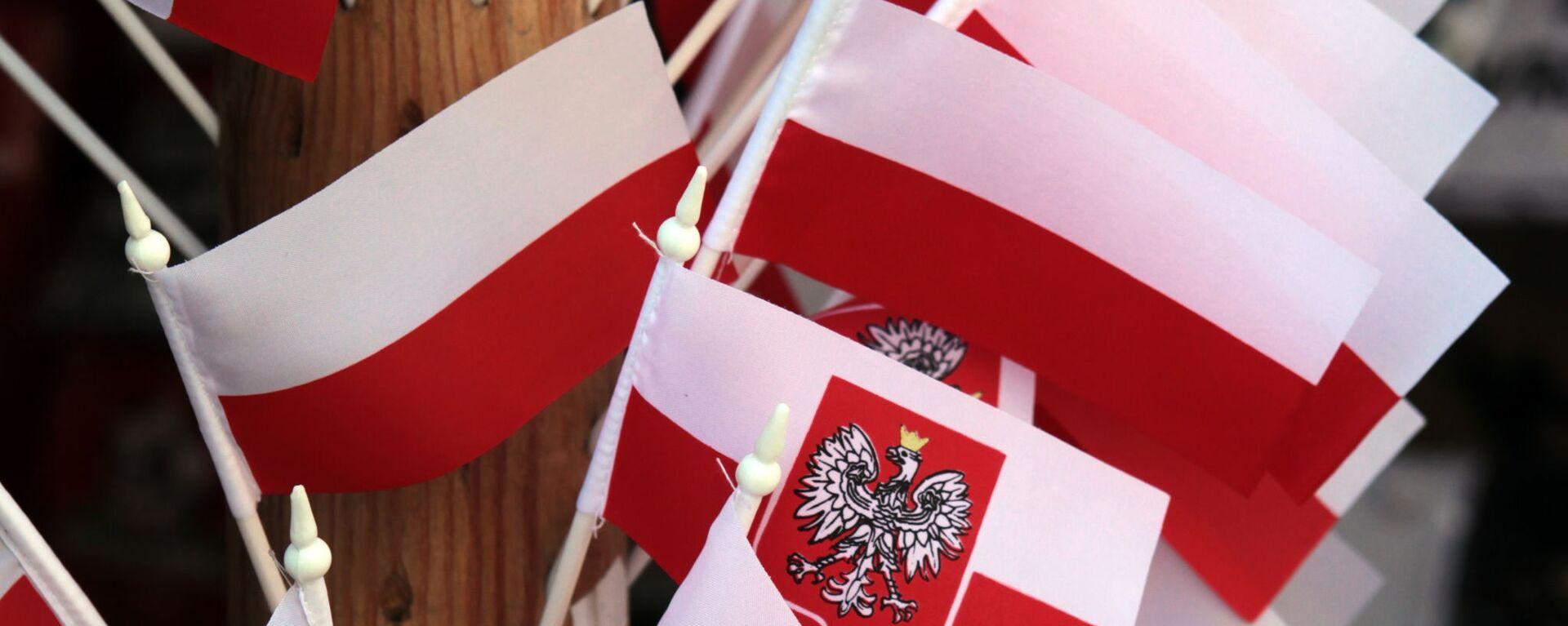 Polskie flagi - Sputnik Polska, 1920, 15.04.2021