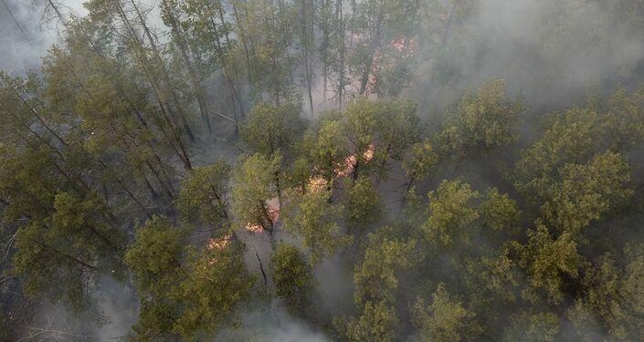 Pożar w Czarnobylskiej Strefie Wykluczenia