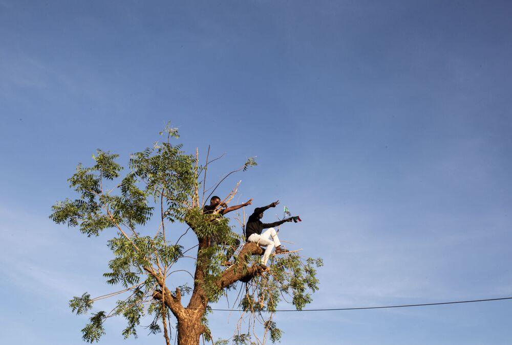 Demonstranci na drzewie w Sudanie