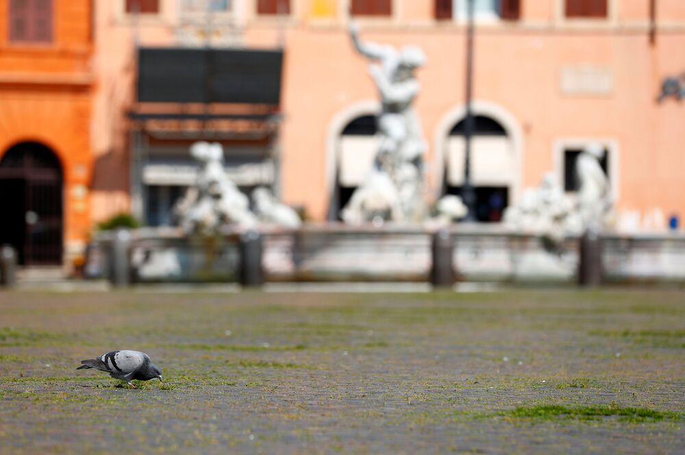 Plac Piazza Navona w Rzymie