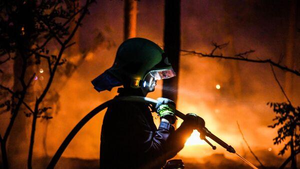 Pożar w lesie - Sputnik Polska