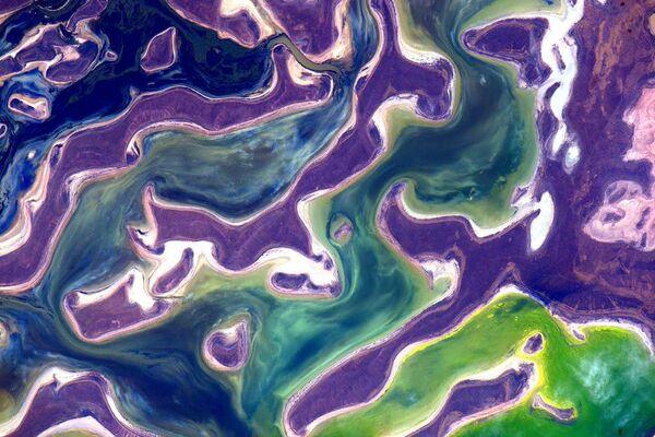 Zdjęcie jeziora Tengiz w Kazachstanie, wykonane przez amerykańskiego astronautę Scotta Kelly'ego  - Sputnik Polska