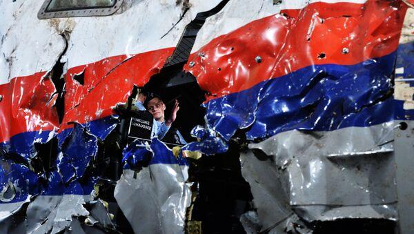 Część wraku samolotu Boeing 777 Malaysia Airlines - Sputnik Polska