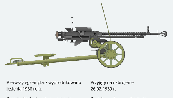 Karabin maszynowy DSzK wz. 1938 - Sputnik Polska