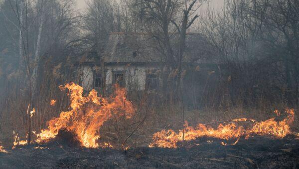 Pożary w Strefie Wykluczenia wokół Czarnobylskiej Elektrowni Jądrowej. - Sputnik Polska