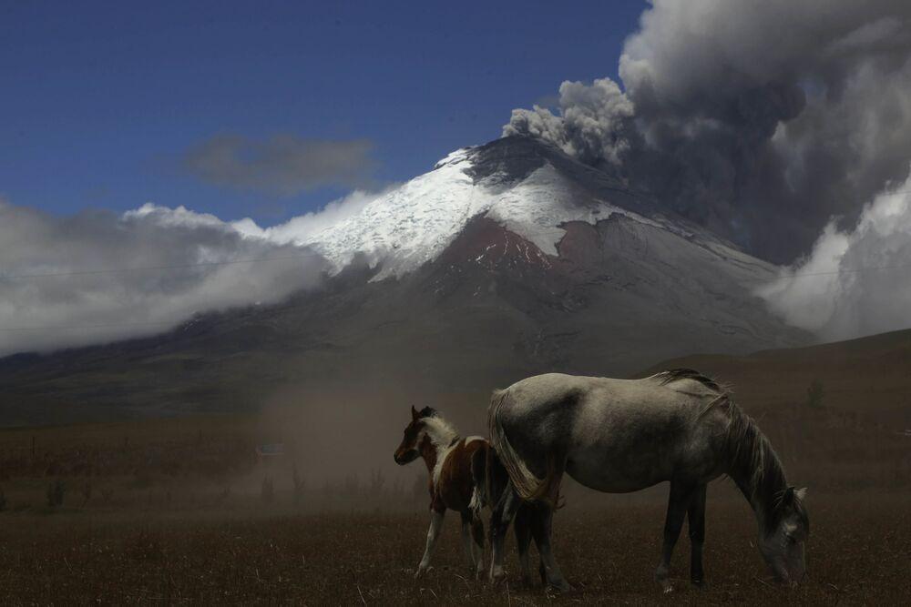 Wulkan ekwadorski Cotopaxi