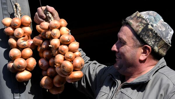 Sprzedawca cebuli - Sputnik Polska
