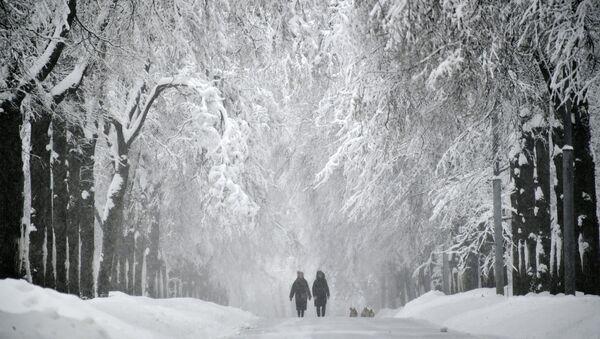 Śnieg - Sputnik Polska