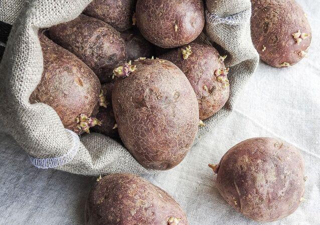 Stare ziemniaki