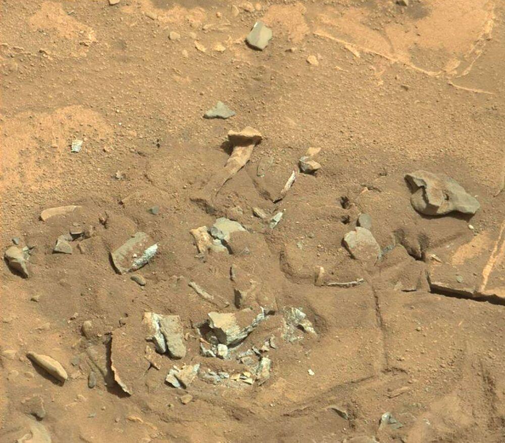 Twór podobny do kości udowej na powierzchni Marsa