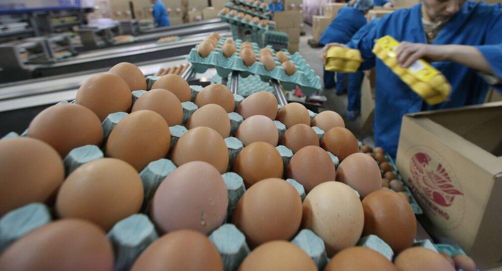 Jajka w wytłaczankach