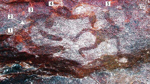 Miniaturowe malowidła naskalne w W jaskini Yilbilinji w Parku Narodowym Limmen na północy Australii - Sputnik Polska