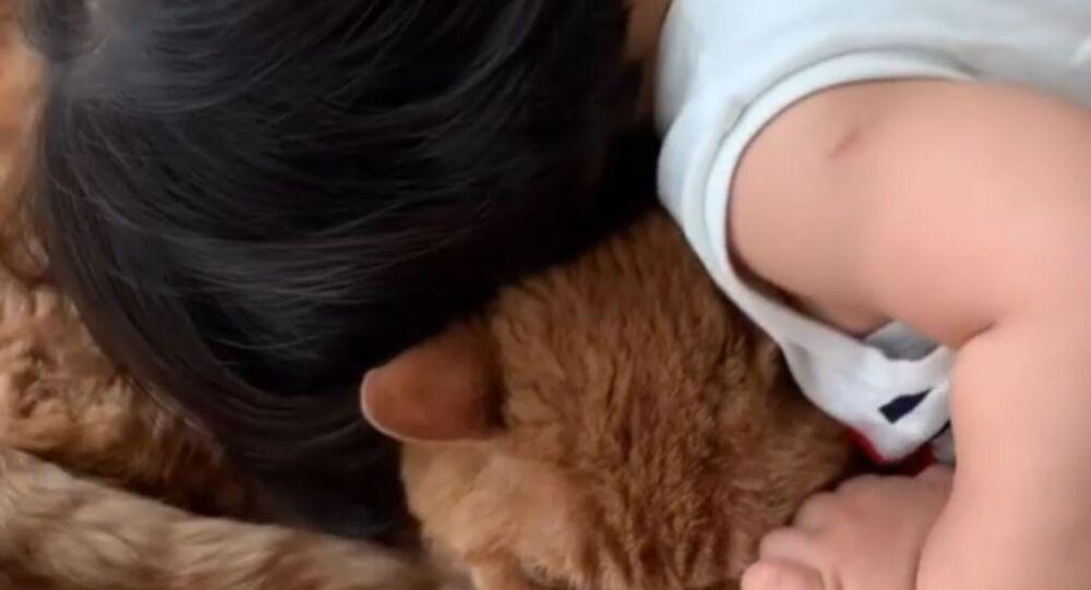 Dziecko i jego ukochany kot