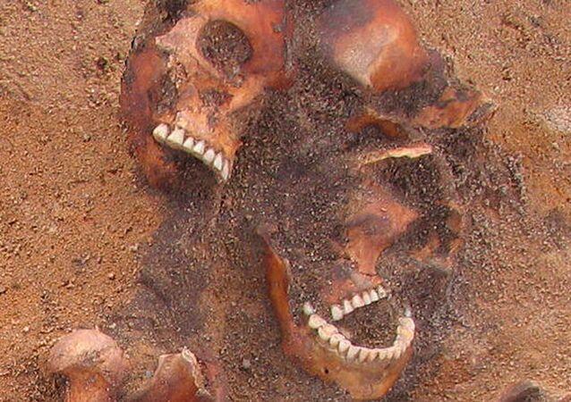 Szczątki znalezione w miejscu rozkopów w Wilnie