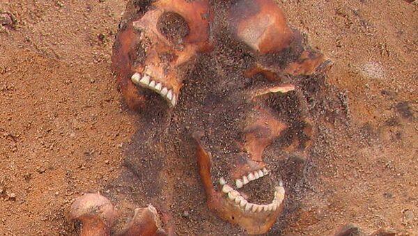 Szczątki znalezione w miejscu rozkopów w Wilnie - Sputnik Polska