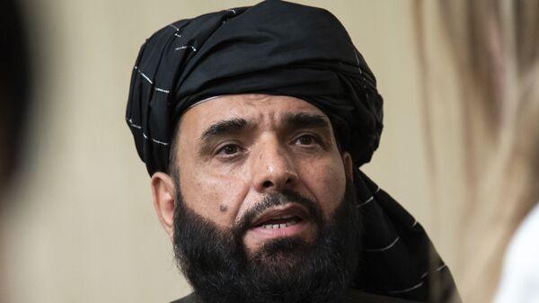 Rzecznik biura politycznego talibów w Katarze Suhail Shaheen. - Sputnik Polska