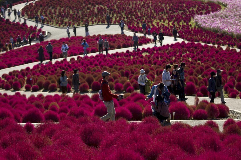 Turyści w parku Hitachi w Tokio