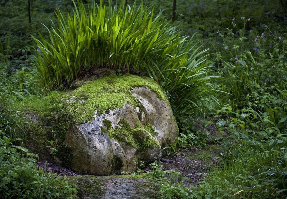 Zaginione Ogrody Heliganu w Kornwalii