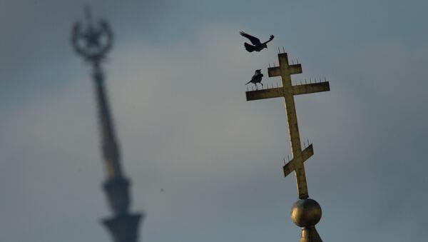 Gołębie na krzyżu jednej z moskiewskich cerkwi - Sputnik Polska