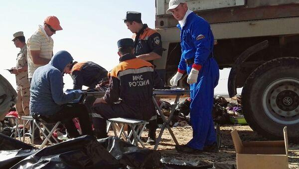 Pracownicy MSN Rosji na miejscu katastrofy rosyjskiego samolotu Airbus A321 w Egipcie - Sputnik Polska