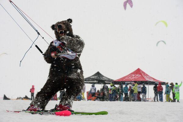 Sportowiec w kostiumie niedźwiedzia podczas wyścigu w dyscyplinie freestyle w ramach Pucharu Syberii w zimowym kitingu na skutym lodem basenie Nowosybirskiej Hydroelektrowni. - Sputnik Polska