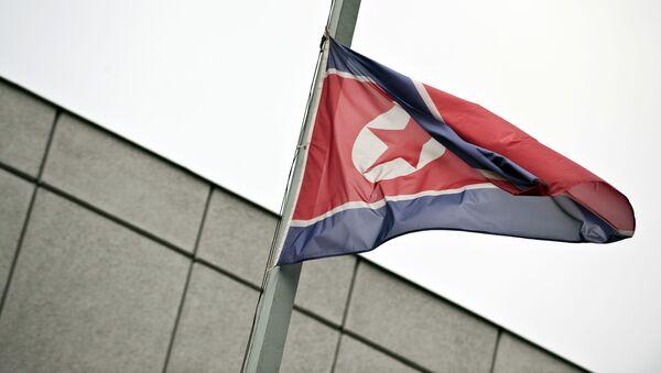 Północnokoreańska flaga - Sputnik Polska