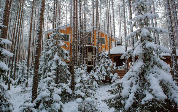 Domek dla gości w lesie na terenie kompleksu turystycznego Karjala Park w Karelii - Sputnik Polska