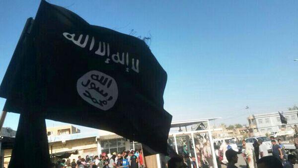 Flaga Daesh w Al-Falludży, Irak - Sputnik Polska