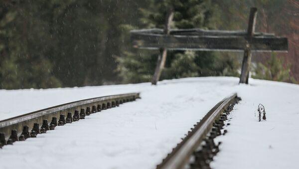 Bocznica kolejowa stacji Sobibór - miejsce rozładunku więźniów niedaleko obozu zagłady w Polsce - Sputnik Polska