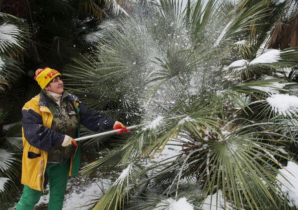 Zima w Soczi - Sputnik Polska
