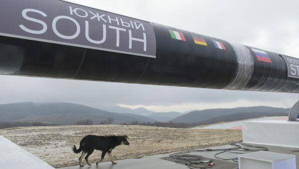 Początek budowy Gazociągu Południowego - Sputnik Polska
