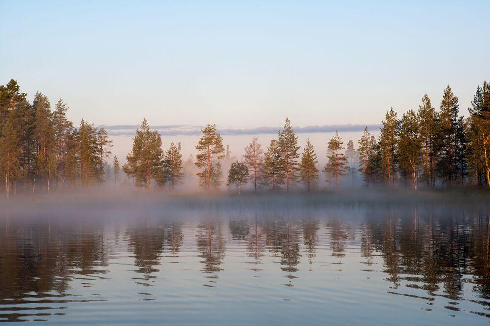Mglisty poranek nad leśnym jeziorem, Karelia, Rosja