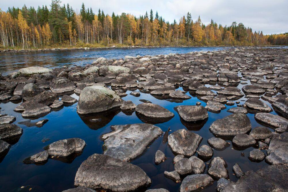 Rzeka Łużma w Karelii, Rosja