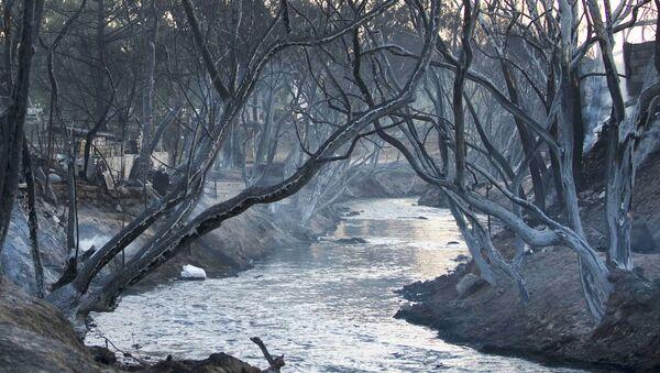 Rzeka Atoyac w Meksyku - Sputnik Polska