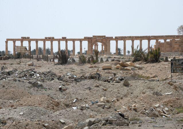 Zabytkowa Palmyra po operacjach zbrojnych