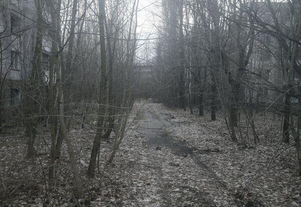 Opuszczona droga w mieście Prypeć - Sputnik Polska
