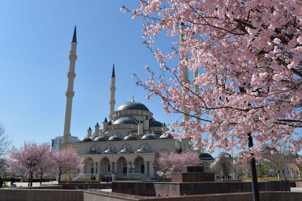 Meczet Serce Czeczeni imienia Achmata Kadyrowa
