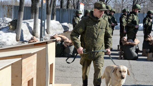 Przygotowanie do wysłania saperów Ministerstwa Obrony Rosji do Syrii w celu rozminowania Palmyry - Sputnik Polska