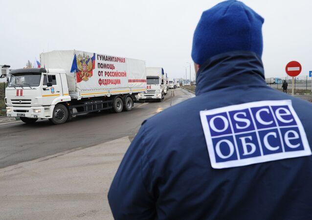 Pracownik OBWE obserwuje kolumnę 50. konwoju z pomocą humanitarną dla mieszkańców obwodu donieckiego i ługańskiego
