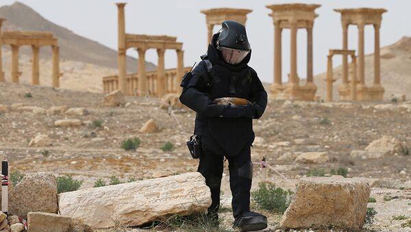 Rozminowywanie historycznej części Palmyry i okolic przez saperów z Międzynarodowego Centrum Przeciwminowego Sił Zbrojnych Federacji Rosyjskiej - Sputnik Polska