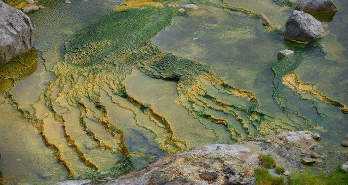 Gejzer Wielikan w Dolinie Gejzerów na Kamczatce