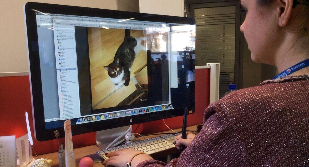 Mieszkaniec Moskwy wystawił na sprzedaż dziewictwo swojego kota