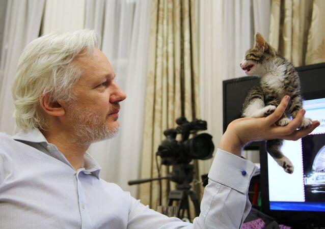 Julian Assange ze swoim kotem