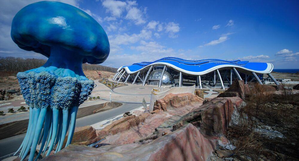 Oceanarium na wyspie Ruskij