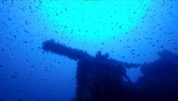 Na dnie morza zanleziono angielski okręt podwodny P311, który zaginął na sardyńskich wodach 73 lata temu - Sputnik Polska