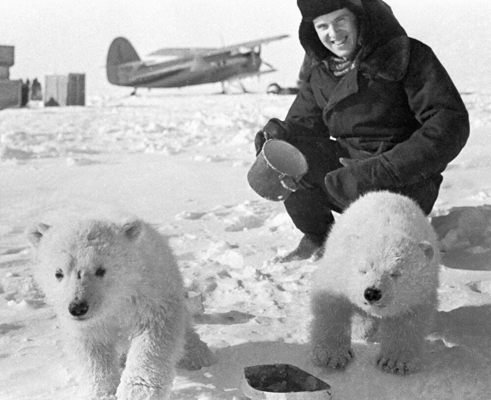 Białe niedźwiedzie na dryfującej stacji naukowej Biegun Północny-19
