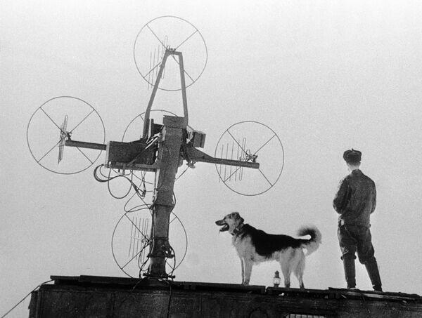 Polarnik z psem na Antarktydzie - Sputnik Polska