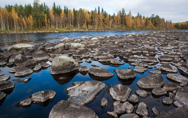 Jedna z atrakcji przyrodniczych Karelii – malownicza rzeka Lużma w Miedwieżogorodzkim rejonie. Jej długość to 20 km. - Sputnik Polska