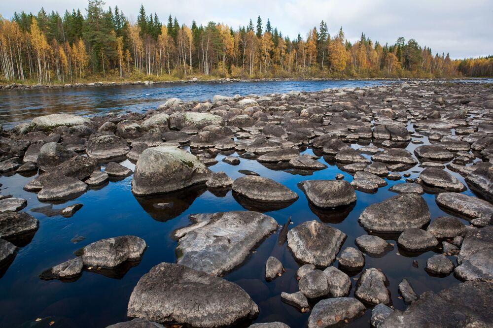 Jedna z atrakcji przyrodniczych Karelii – malownicza rzeka Lużma w Miedwieżogorodzkim rejonie. Jej długość to 20 km.